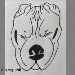 Alp Aygenli-çizim